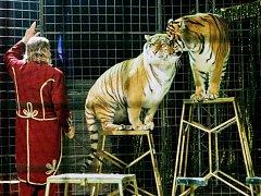 Cirkus Jo-Joo v Pardubicích.
