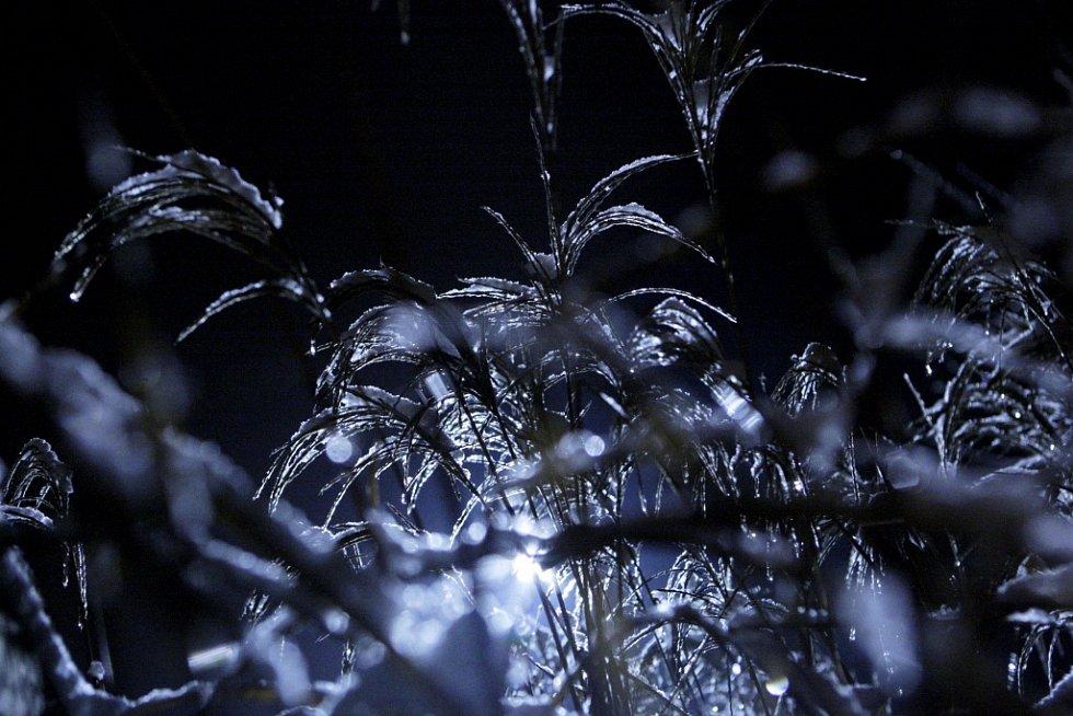 Námraza v nočních Pardubicích