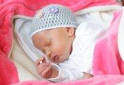 MIA WINZIGOVÁ se narodila 9. ledna v 17 hodin a 31 minut. Měřila 46 centimetrů a vážila 2490 gramů. Rodiče Veronika a Lukáš bydlí v České Třebové.