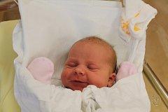 Tříletá Lenička Fejlová z Plané se již nemůže dočkat své sestřičky Elišky (3,54 kg, 50 cm), která se narodila 9. 1. ve 23:45 ve FN v Plzni mamince Hance a tatínku Alešovi