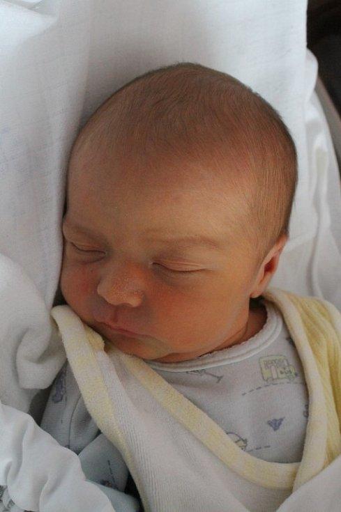 Osmiletý Michal Štrauch ze Starého Plzence dostal 28. 2. v 8:23 bratříčka Filipa. Filip (3,05 kg, 48 cm) se narodil v plzeňské fakultní nemocnici rodičům Iloně a Michalovi