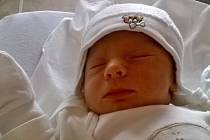 21. 1. 2016 se v 1:37 ve FN Lochotín narodil Antonín Koudelka. Po porodu měřil druhý synek Ivy a Lukáše 51 cm a vážil 3290g. Doma v Plzni se z něj raduje tříletý bráška Lukáš.
