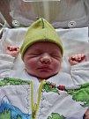 František Haišman se narodil 29. března v 18:42 mamince Aleně a tatínkovi Tomášovi z Plzně. Po příchodu na svět v plzeňské FN vážil bráška tříletého Pepíčka 4020 gramů a měřil 52 centimetrů.