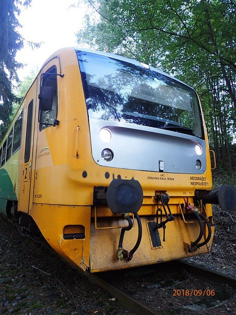 Vlak poškozený po srážce skoněm