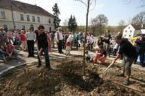 Náves v Prádle u Nepomuka zdobí od velikonočního pondělí osm nových stromů, z nichž každý má svého patrona
