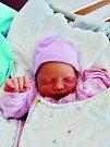Alice Bartošková se narodila 9. července ve 4:15 mamince Martě a tatínkovi Janovi z Plzně. Po příchodu na svět v plzeňské fakultní nemocnici vážila sestřička tříletého Lukáše 2300 gramů a měřila 46 centimetrů.