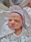 Jan Kaprál se narodil 9. ledna v 18:18 mamince Michaele a tatínkovi Jiřímu z Plzně. Po příchodu na svět v plzeňské FN vážil jejich prvorozený synek 3440 gramů a měřil 50 centimetrů.