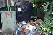 V Lesní ulici se vytvořila v minulých dnech černá skládka. Odpadky by měly končit ve sběrném dvoře