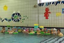Plaveckou školu Rosnička v bazénu na Slovanech navštěvují především děti z mateřských škol z celého Plzeňska.