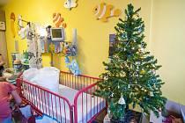 Vánoční dárky pro malé pacienty hemato-onkologického oddělení v Plzni.