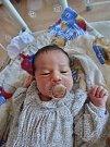 Stella Pechmanová se narodila 15. července minutu po jedenácté dopoledne mamince Markétě a tatínkovi Markovi ze Zruče-Sence. Po příchodu na svět vážila sestřička tříleté Laury 3370 gramů a měřila 50 cm