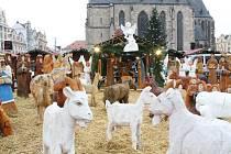 V sobotu v Plzni začaly adventní trhy, potrvají do 23. prosince