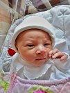 Lola Křížková se narodila 26. ledna 44 minut po půlnoci mamince Lucii a tatínkovi Davidovi z Plzně. Po příchodu na svět v plzeňské fakultní nemocnici vážila sestřička čtyřletého Davida 3010 gramů a měřila 48 centimetrů.