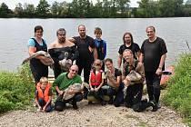 Během pěti víkendů ochránci okroužkovali na dvě stě labutí.