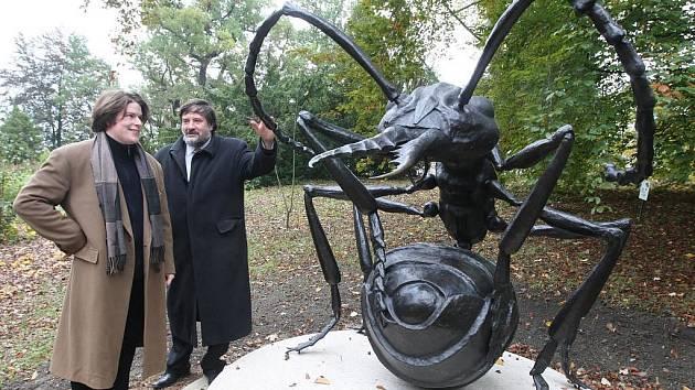 Socha mravence v bojové pozici a nadživotní velikosti je od středy novou ozdobou arboreta plzeňské zoo v sousedství japonské zahrady Šówa-en