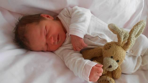 Štěpánka P. se narodila 9. února 2021 v Domažlické nemocnici. Při narození vážila 2820 g a měřila 50 cm.