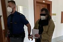 Osmačtyřicetiletý Petr B. ze Sokolova (na snímku vpravo) trpí sexuální deviací. Svoji nezletilou neteř opakovaně nutil k pohlavnímu styku.