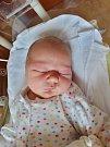 Olivie Miletínská se narodila 4. června ve 23:54 mamince Olze a tatínkovi Martinovi ze Třemošné. Po příchodu na svět v plzeňské fakultní nemocnici vážila sestřička dvouletého Marka 4010 gramů a měřila 53 centimetrů.