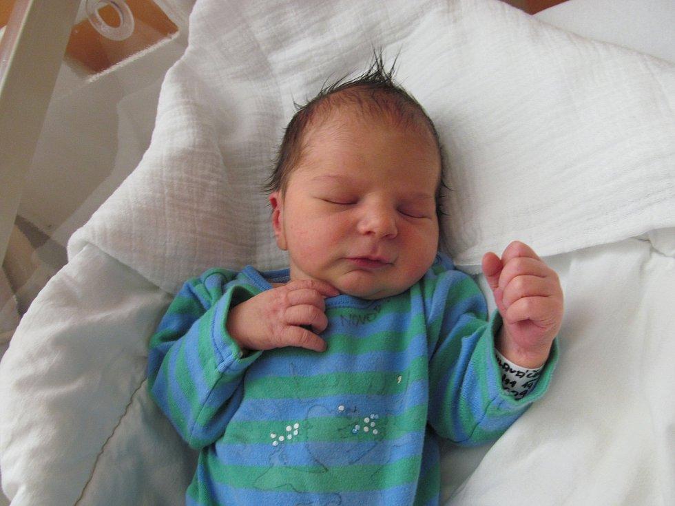 Alfréd Hlaváček ze Stoda se narodil v klatovské porodnici 13. listopadu ve 2:26h (3260 g). Maminku Veroniku podporoval na porodním sále tatínek Karel. Na brášku se doma těší Stella (4) a Karla (2).