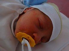 Roční Růžence se 3. ledna v 5:17 narodil bráška David Průcha. Po porodu vážil syn Jany a Davida z Plzně 3530 gramů a měřil 50 centimetrů
