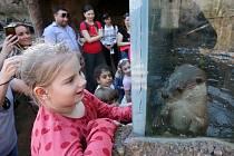 Otevření České řeky v plzeňské zoo