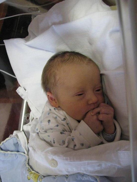 Maminka Petra Hofmanová a tatínek Martin Hanzlík ze Strahova přivítali na světě Jakuba (3,64 kg, 50 cm). Jejich prvorozený syn se narodil 17. Listopadu v 5:48 ve Fakultní nemocnici v Plzni