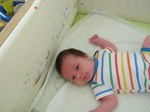 Karla Elis Davidov se narodila 5. července v 1:18 mamince Janě a tatínkovi Gülenovi . Po příchodu na svět v plzeňské FN vážila jejich dcerka 3994 gramů a měřila 52 centimetrů