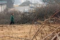 V okolí Vojanovy ulice bylo pokáceno asi třicet stromů a keřů. Má se zde stavět napojení na městský okruh, tedy propojení mezi Domažlickou a Křimickou ulicí. Samotná stavba však zatím nezačala, brzdí ji nevyřešené pozemky