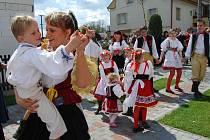 Tradice staročeských májů v Kozojedech opět ožila.