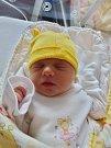 Šárka Kokošková se narodila 29. května ve 14:43 mamince Hance a tatínkovi Petrovi z Hájí. Po příchodu na svět v plzeňské FN vážila sestřička tříleté Haničky 3680 gramů a měřila 43 centimetrů.
