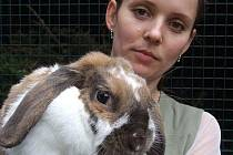 Ochránkyně zvířat Jana Saghianová a nalezenec–králík  Bob.
