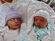 Dvojčata Karin a Kryštof Cíchovi se narodila 24. července mamince Jitce a tatínkovi Josefovi zPlzně. Po příchodu na svět vážila o dvě minuty starší Karin, která se narodila ve 21:57, 2310 gramů a měřila 45 cm. Kryštof vážil 2800 gramů a měřil 49 cm