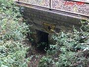 Miloš Babyka se skrýval pod železničním mostem nedaleko Zábělé