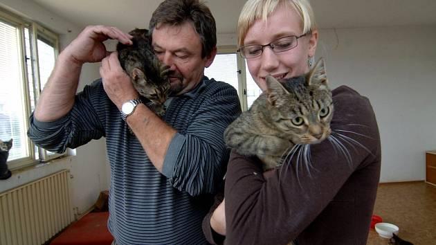 V Plzni na Bručné se starají o opuštěné kočky dobrovolníci z občanského sdružení `Kočka mezi lidmi`.