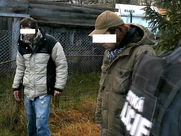 V zahrádkářské kolonii našel služební pes policie podezřelé muže s marihuanou a stříkačkami