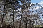 V plzeňské zoo ohrožoval strom voliéru