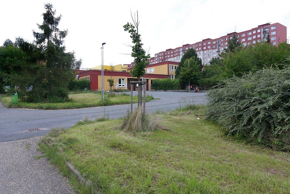 Upravený trávník před ZŠ v Brněnské ulici na sídlišti Vinice.