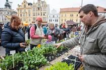 Farmářské trhy v Plzni zahájili již šestou sezónu.