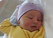 Václav Šenk se narodil 6. srpna ve 2:57 mamince Janě a tatínkovi Josefovi z Líšiny. Po příchodu na svět v lochotínské fakultní nemocnici vážil prvorozený syn 3830 gramů a měřil 51 centimetrů.