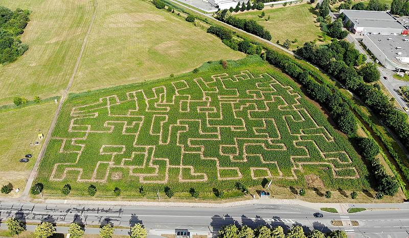 Kukuřičný labyrint.