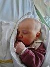 Adina Holečková se narodila 4. března v 6:55 mamince Sandře a tatínkovi Jiřímu z Plzně. Po příchodu na svět v porodnici U Mulačů vážila sestřička Jasmínky 3600 gramů a měřila 51 centimetrů.
