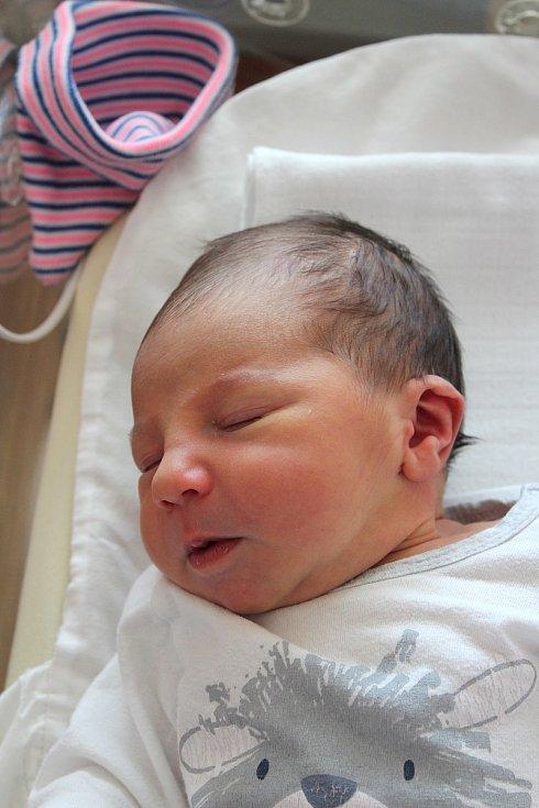 Anna Černá z Dobřan se narodila  v plzeňské FN na Lochotíně 31. srpna v 10:05 hodin (3400 g, 51 cm). Rodiče Adéla a Martin věděli, že jejich prvorozené miminko bude holčička.