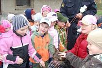 Po ukázce si mohly děti policejního psa pohladit. Chvílemi byl Kvery laskán tak usilovně, že ani nebylo vidět, kde je.