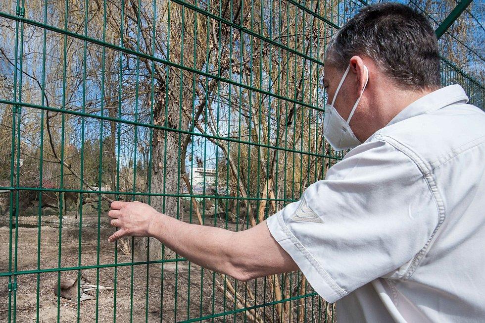 Zoologická zahrada Plzeň.