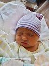Sára Heider se narodila 23. března ve 14:40 mamince Alici a tatínkovi Peterovi zPlzně. Po příchodu na svět vplzeňské FN vážila sestřička skoro dvouletého Jáchyma 3410 gramů a měřila 51 centimetrů.
