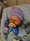 Viktorie Bachorová se narodila 1. prosince v 9:31 mamince Lucii a tatínkovi Markovi z Plzně. Po příchodu na svět v plzeňské FN vážila jejich prvorozená dcerka 3080 gramů a měřila 47 cm.
