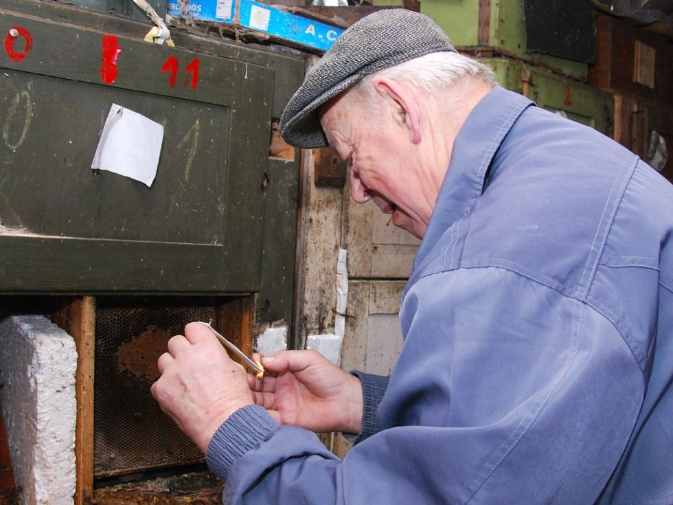 Jednou z prevencí proti varroáze je fumigace, kdy včelař nakape         na knot speciální přípravek. Knot zapálí a pověsí do úlu