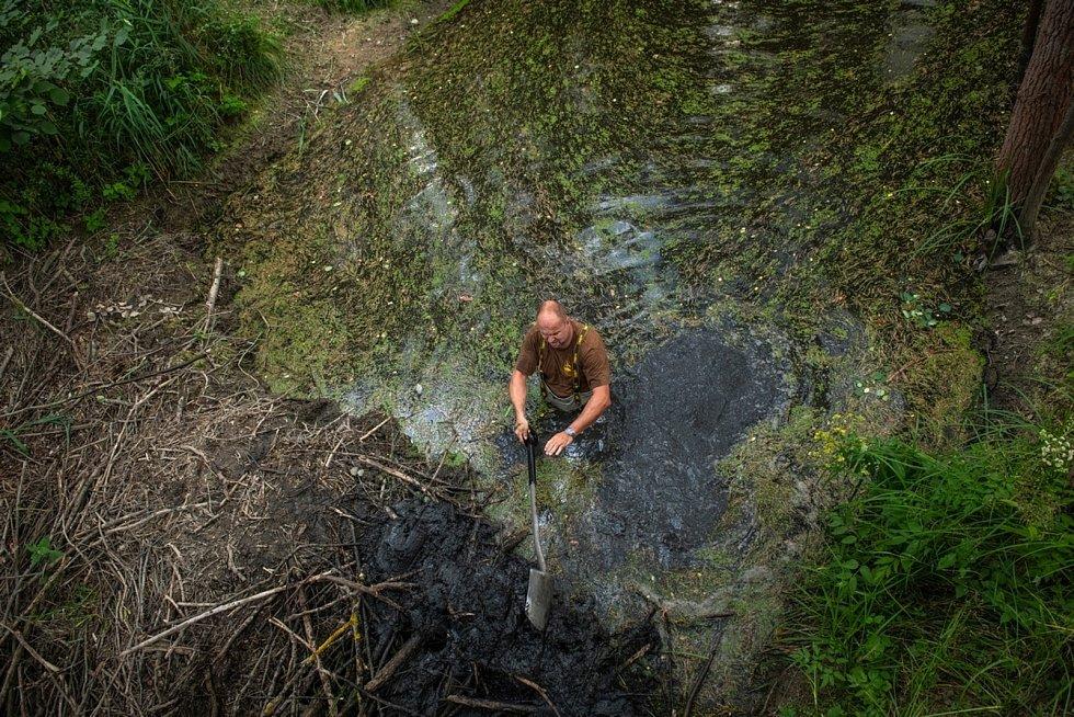 Karel Makoň opravil člověkem zničenou hráz bobra evropského u Nýřan.