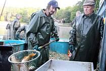 Výlov Seneckého rybníka se konal po čtyřech letech, rybáři jsou s výsledkem spokojeni.