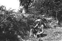 Nejvější překážkou při postupu amerických jednotek byly v roce 1944 v těchto červencových dnech křoviny, remízky, zkrátka živé ploty,  v nichž se Němci urputně bránili